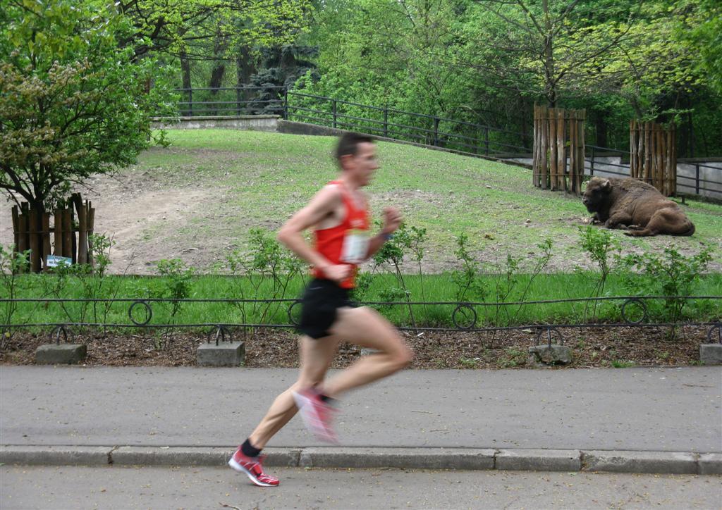 Bieg dookola zoo 2010_gizynski-za-szybki