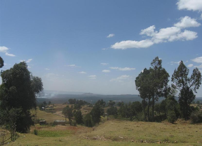 nakuru_kenia-2011-Gizynski (11)