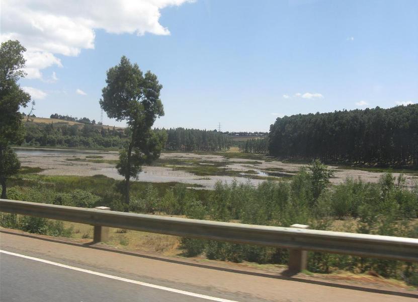 nakuru_kenia-2011-Gizynski (12)